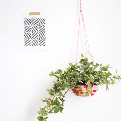 plant it pretty