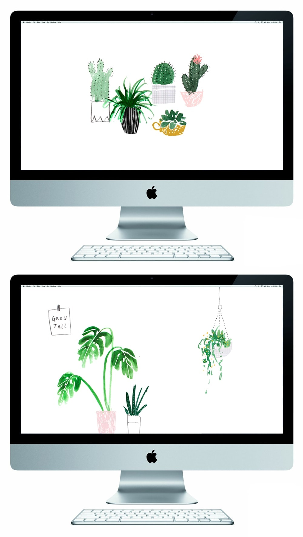 plant life free desktop wallpapers