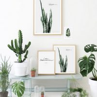botanical-art-prints-the-lovely-drawer-interior-decor