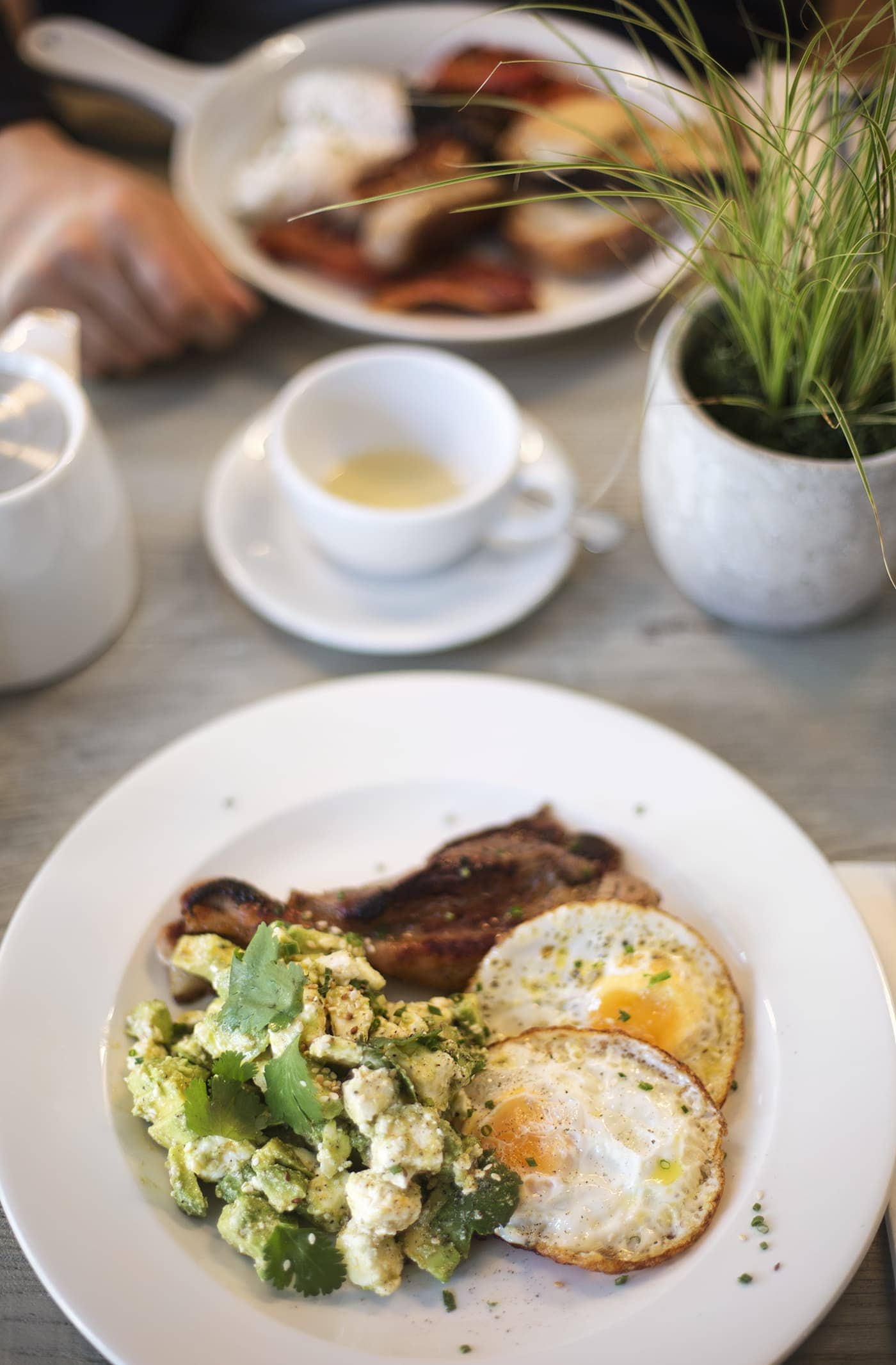 no197 chiswick firestation | brunch | breakfast | velvet sofas