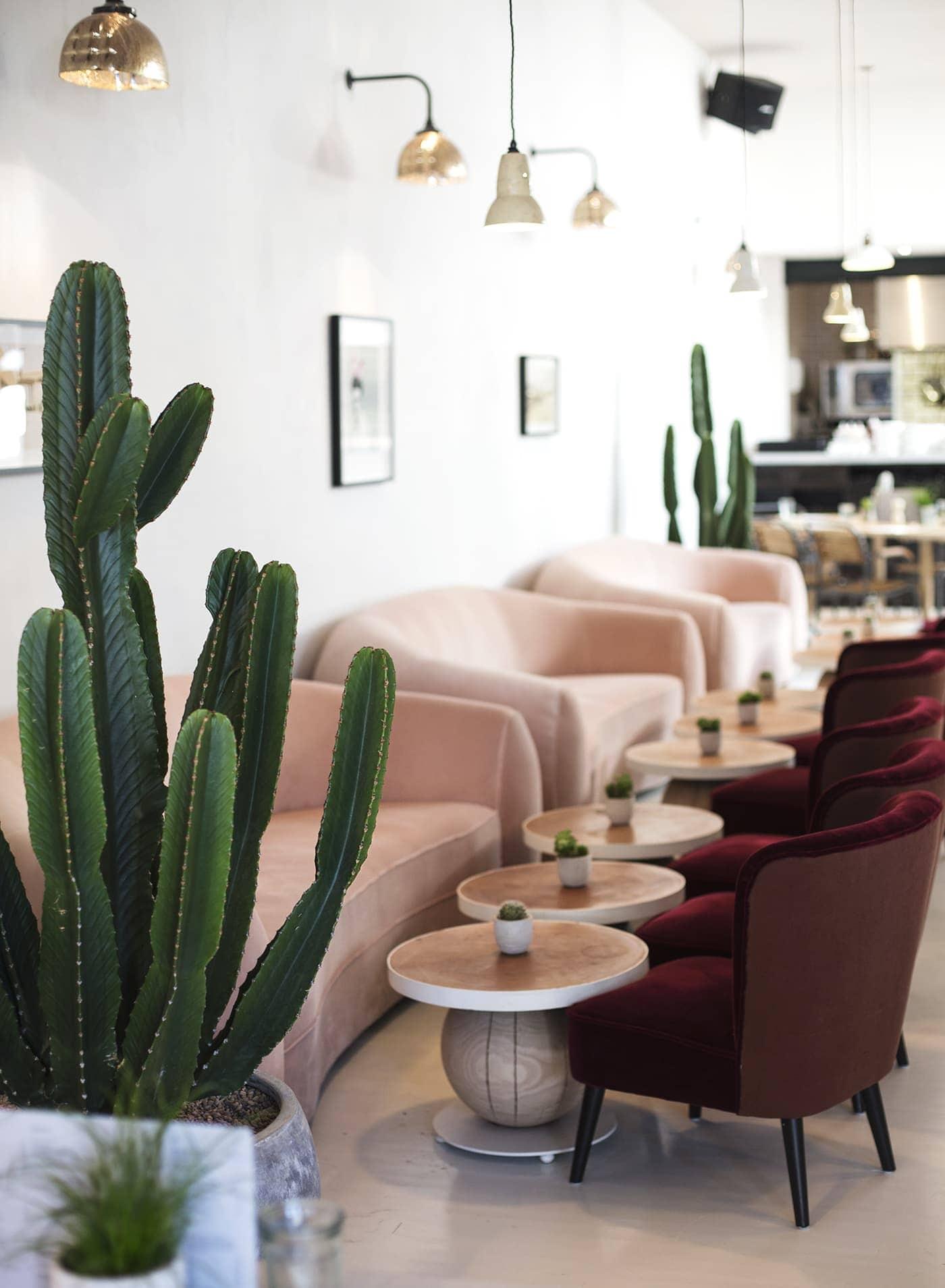 no197 chiswick firestation | velvet sofa inspiration| cactus