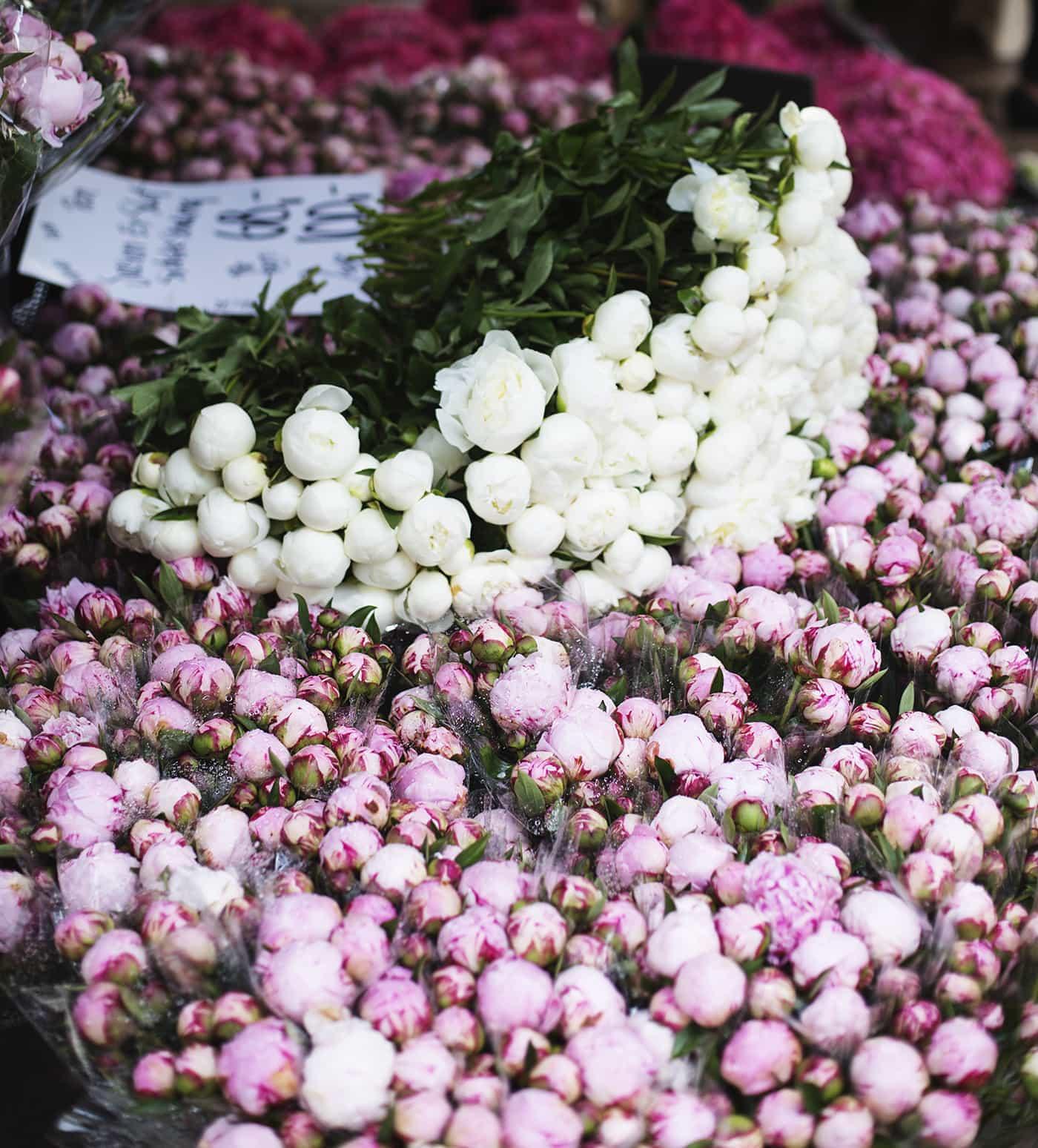 Copenhagen | wanderlust | flower market | peonies