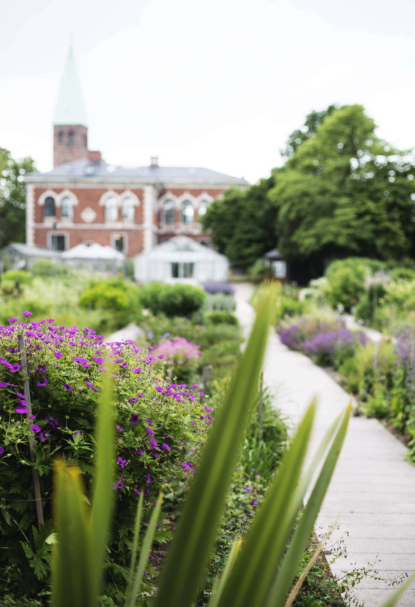 copenhagen-wanderlust-botanical-gardens-1