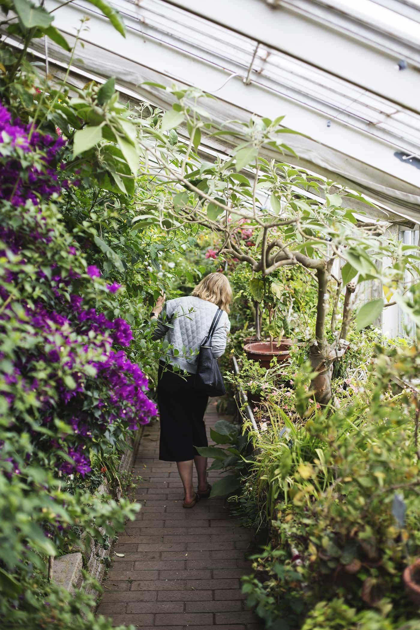 copenhagen-wanderlust-botanical-gardens-4