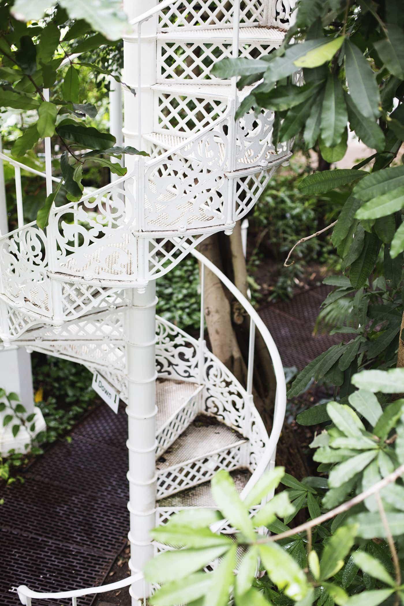 copenhagen-wanderlust-botanical-gardens-5
