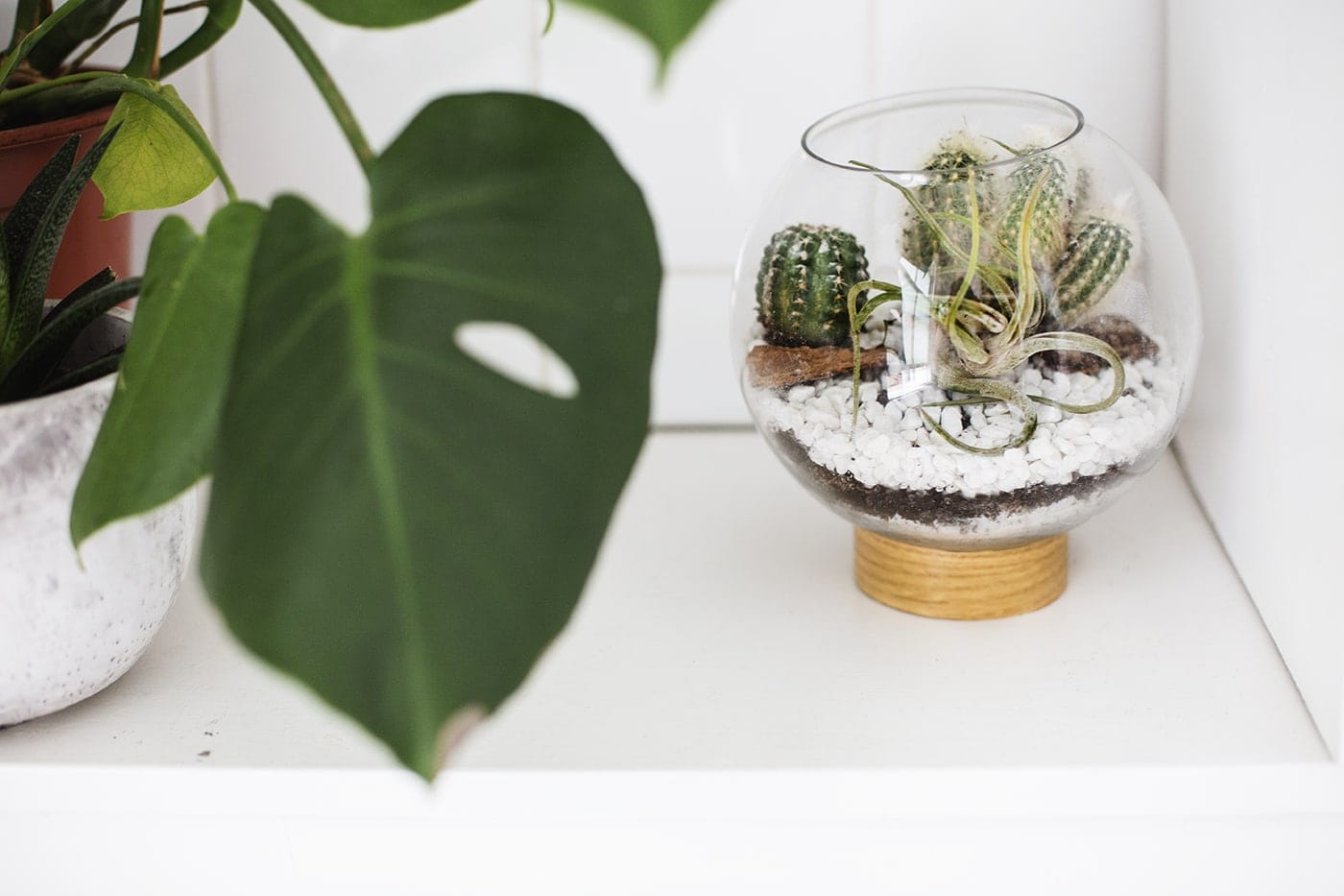 DIY mid century terranium idea | easy crafts | DIY project
