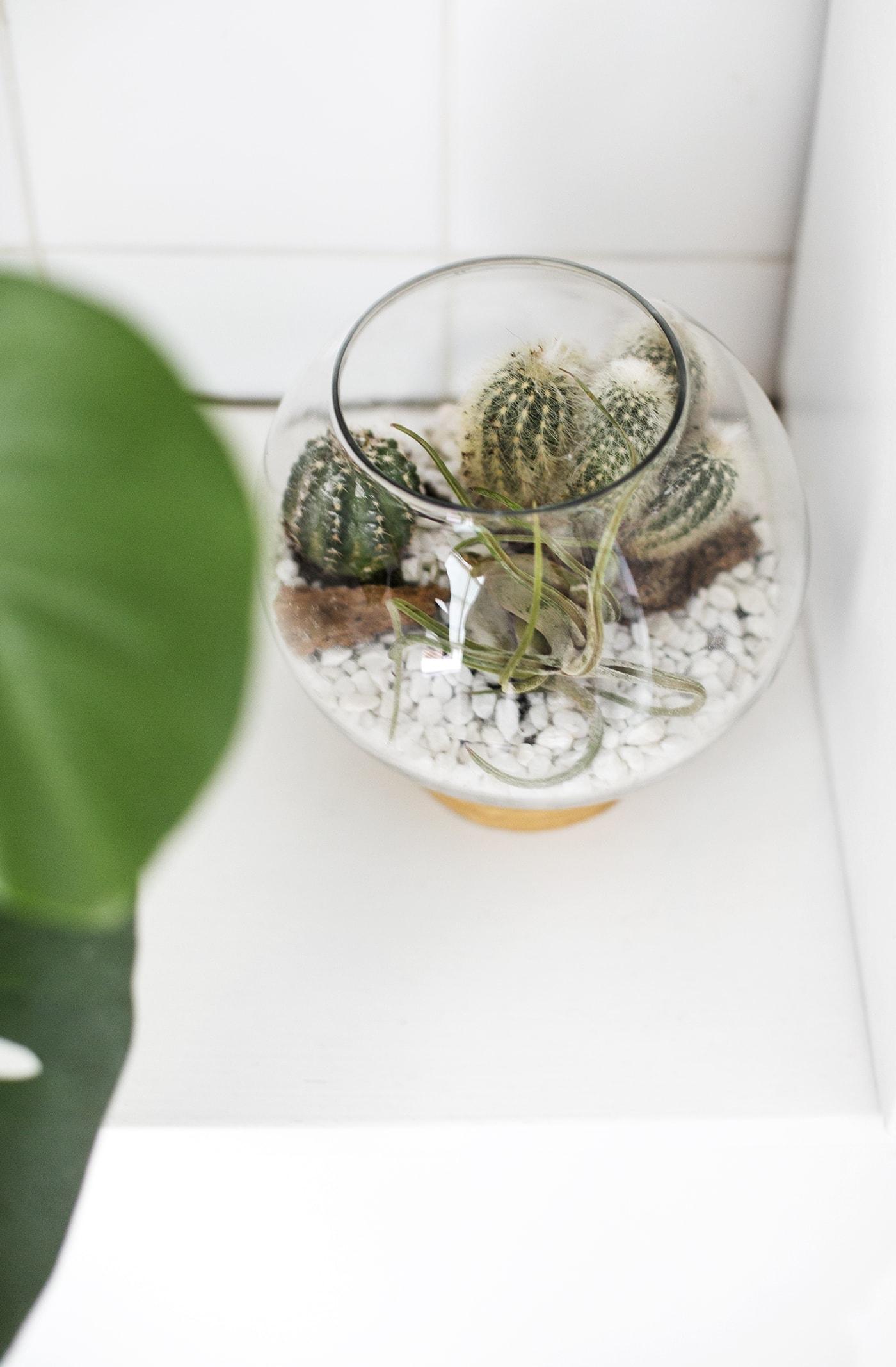 DIY mid century terrarium idea