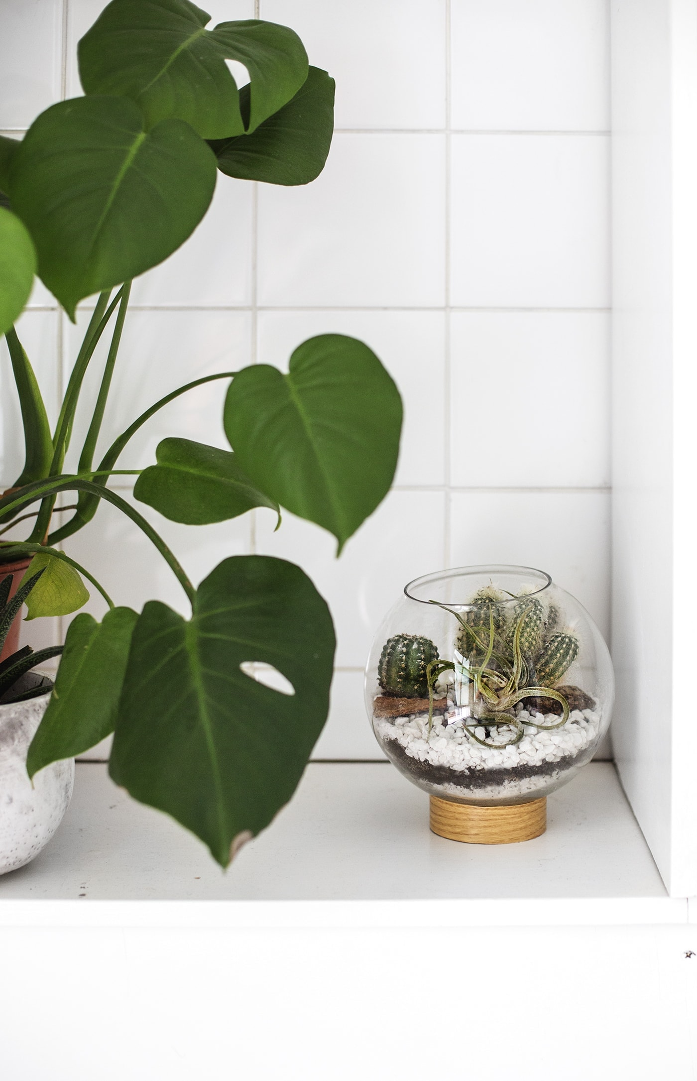 DIY mid century terrarium tutorial | easy crafts | interior ideas