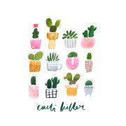 cacti-killer-2