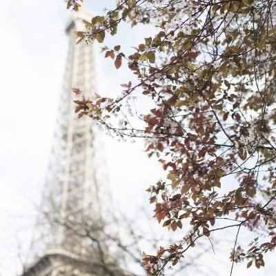 Spring Time In Paris: Part 1